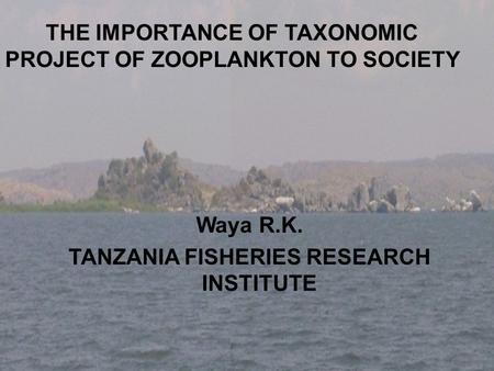 THE IMPORTANCE OF TAXONOMIC PROJECT OF ZOOPLANKTON TO SOCIETY Waya R.K. TANZANIA FISHERIES RESEARCH INSTITUTE.
