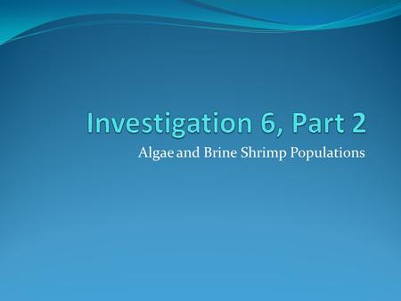 Algae and Brine Shrimp Populations