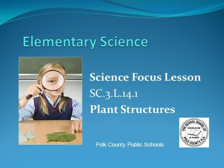 Science Focus Lesson SC.3.L.14.1 Plant Structures Polk County Public Schools.