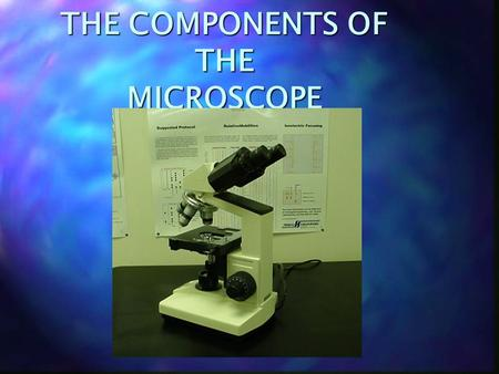 THE COMPONENTS OF THE MICROSCOPE. THE MICROSCOPE n EYEPIECE.
