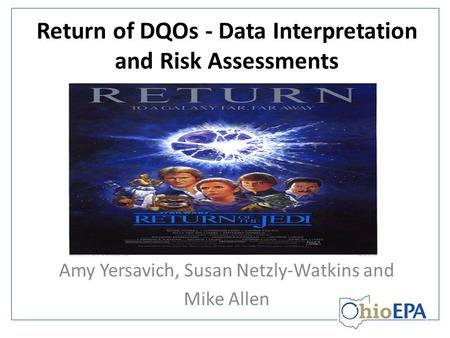 Return of DQOs - Data Interpretation and Risk Assessments Amy Yersavich, Susan Netzly-Watkins and Mike Allen.