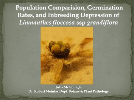 Population Comparision, Germination Rates, and Inbreeding Depression of Limnanthes floccosa ssp grandiflora Population Comparision, Germination Rates,