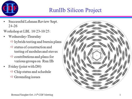Brenna Flaugher Oct. 31 th CDF Meeting1 RunIIb Silicon Project Successful Lehman Review Sept. 24-26 Workshop at LBL 10/23-10/25: Wednesday-Thursday  hybrids.