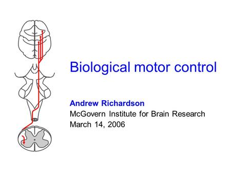 Biological motor control Andrew Richardson McGovern Institute for Brain Research March 14, 2006.