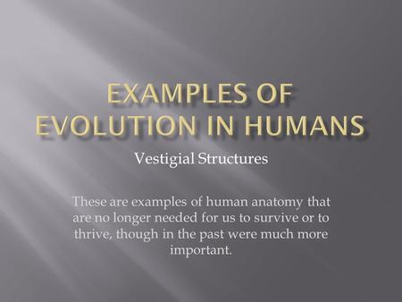 Vestigial Structures These are examples of human anatomy that are no longer needed for us to survive or to thrive, though in the past were much more important.