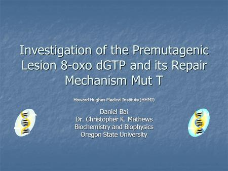 Investigation of the Premutagenic Lesion 8-oxo dGTP and its Repair Mechanism Mut T Howard Hughes Medical Institute (HHMI) Daniel Bai Dr. Christopher K.