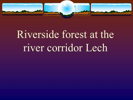 Riverside forest at the river corridor Lech. Important for the development of societies  Elevation above the river and the water level  Speed of fluid.