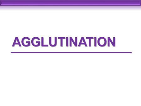 AGGLUTINATION. Agglutination The interaction between antibody and a particulate antigen results in visible clumping called agglutination Particulate antigen.