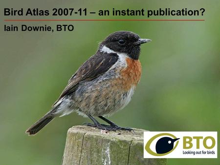 Bird Atlas 2007-11 – an instant publication? Iain Downie, BTO.
