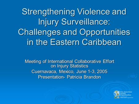 Strengthening Violence and Injury Surveillance: Challenges and Opportunities in the Eastern Caribbean Meeting of International Collaborative Effort on.