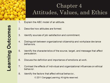 organizational behavior chapter 3 attitudes and job satisfaction Attitudes and job satisfaction | organizational behavior (chapter 3) subscribe this channel to get more knowledge,slides,lectures,presentations etc.