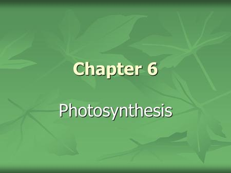 Chapter 6 Photosynthesis.
