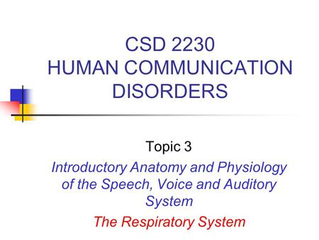 CSD 2230 HUMAN COMMUNICATION DISORDERS Topic 3 Introductory Anatomy and Physiology of the Speech, Voice and Auditory System The Respiratory System.