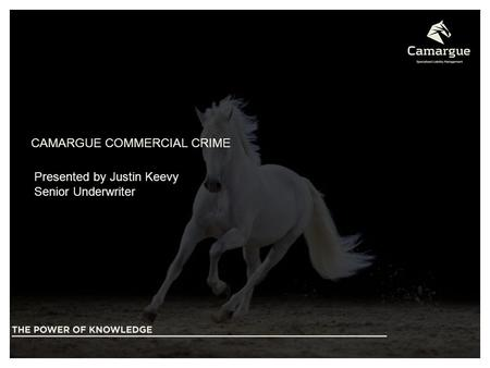 CAMARGUE COMMERCIAL CRIME Presented by Justin Keevy Senior Underwriter.