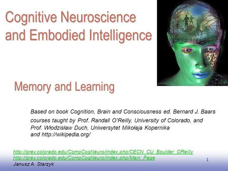 Cognitive Neuroscience <strong>and</strong> Embodied Intelligence