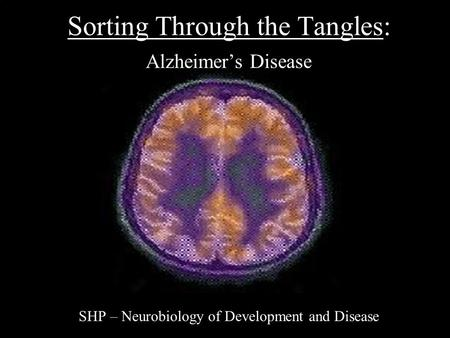 Sorting Through the Tangles: Alzheimer's Disease
