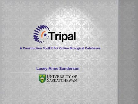 A Construction Toolkit For Online Biological Databases Lacey-Anne Sanderson.