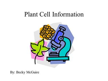 Plant Cell Information By: Becky McGuire. Cell Structure A. Cell: basic structural and physiological unit of all life.
