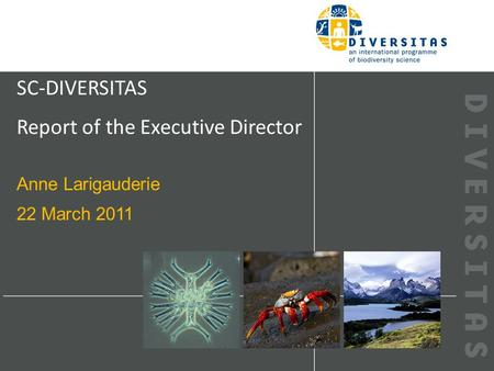 SC-DIVERSITAS Report of the Executive Director Anne Larigauderie 22 March 2011.