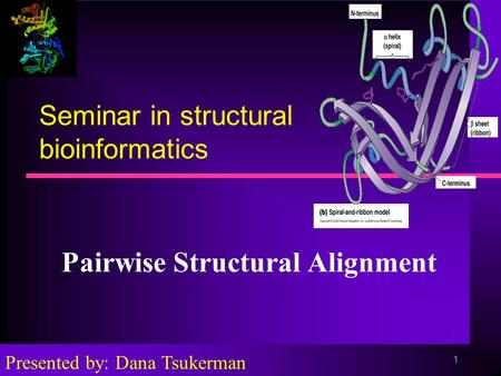 1 Seminar in structural bioinformatics Pairwise Structural Alignment Presented by: Dana Tsukerman.