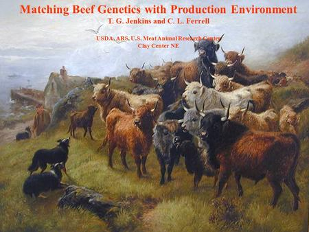 Matching Beef Genetics with Production Environment T. G. Jenkins and C. L. Ferrell USDA, ARS, U.S. Meat Animal Research Center Clay Center NE.