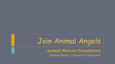 Join Animal Angels Animal Rescue Foundation Student Name, Volunteer Coordinator.