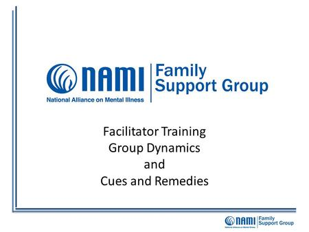 Facilitator Training Group Dynamics and Cues and Remedies.