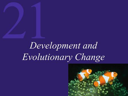 21 Development and Evolutionary Change. 21 Introduction Evolution and Development Regulatory Genes and Modularity: Modifying Morphology Plant Development.