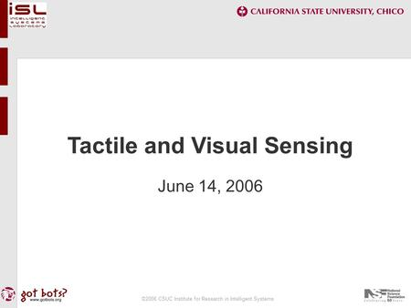 ©2006 CSUC Institute for Research in Intelligent Systems Tactile and Visual Sensing June 14, 2006.