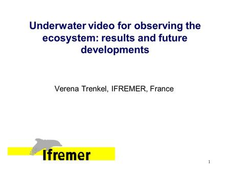 1 Underwater video for observing the ecosystem: results and future developments Verena Trenkel, IFREMER, France.