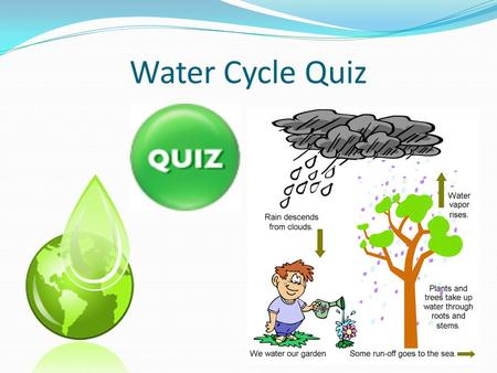 Water Cycle Quiz. How much of the earth's water is ocean? A) 50% B) 30% C) 75% D) 90%