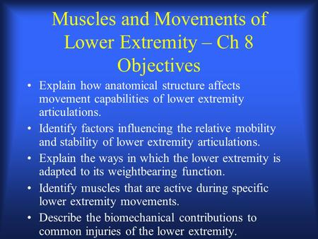 Muscles and Movements of Lower Extremity – Ch 8 Objectives Explain how anatomical structure affects movement capabilities of lower extremity articulations.
