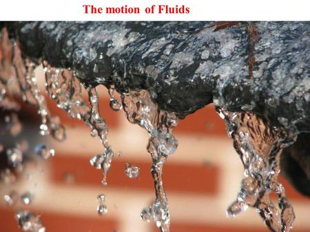 The motion of Fluids.