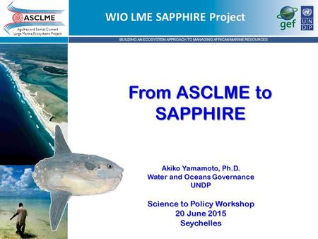 BUILDING AN ECOSYSTEM APPROACH TO MANAGING AFRICAN MARINE RESOURCES Agulhas and Somali Current Large Marine Ecosystems Project From ASCLME to SAPPHIRE.