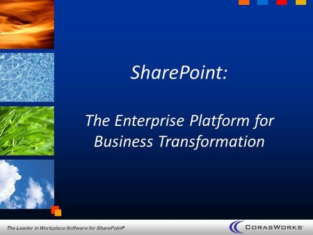 The Leader in Workplace Software for SharePoint ® SharePoint: The Enterprise Platform for Business Transformation.