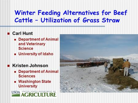 Winter Feeding Alternatives for Beef Cattle – Utilization of Grass Straw Carl Hunt Department of Animal and Veterinary Science University of Idaho Kristen.