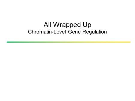 All Wrapped Up Chromatin-Level Gene Regulation. Genes can be regulated by chromatin organization GENETIC EPIGENETIC Pierce, B. 2005. Genetics, a conceptal.