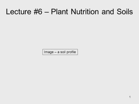 1 Image – a soil profile Lecture #6 – Plant Nutrition and Soils.