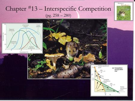 Chapter #13 – Interspecific Competition