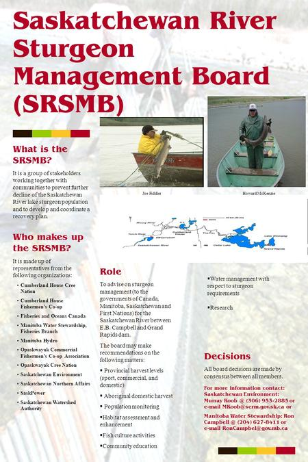 Saskatchewan River Sturgeon Management Board (SRSMB) What is the SRSMB? It is a group of stakeholders working together with communities to prevent further.