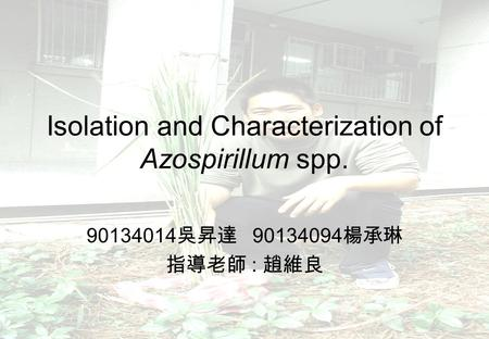 Isolation and Characterization of Azospirillum spp. 90134014 吳昇達 90134094 楊承琳 指導老師 : 趙維良.