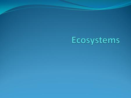Learning Objectives State key terms and definitions State that ecosystems are dynamic Describe how energy is transferred through ecosystems.