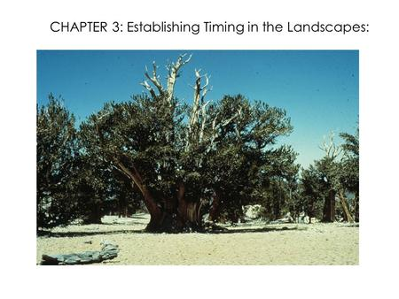 CHAPTER 3: Establishing Timing in the Landscapes:.