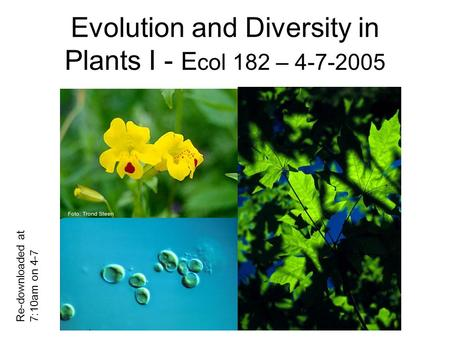 Evolution and Diversity in Plants I - E col 182 – 4-7-2005 Re-downloaded at 7:10am on 4-7.