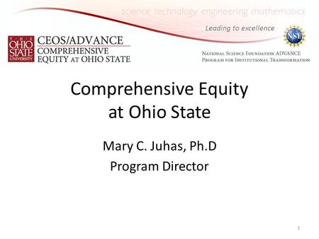 Leading to excellence Comprehensive Equity at Ohio State Mary C. Juhas, Ph.D Program Director 1.