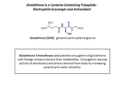Glutathione is a Cysteine-Containing Tripeptide - Electrophile Scavenger and Antioxidant Glutathione S-transferase catalyzes the conjugation of glutathione.