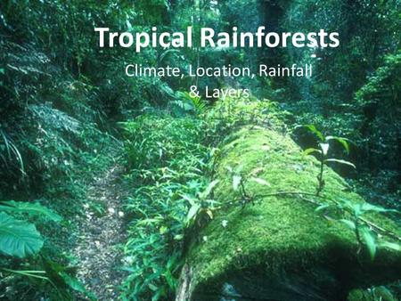 Climate, Location, Rainfall