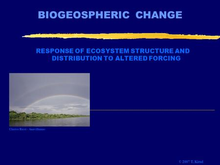BIOGEOSPHERIC CHANGE RESPONSE OF ECOSYSTEM STRUCTURE AND DISTRIBUTION TO ALTERED FORCING © 2007 T. Kittel Clarice Bassi - Anavilhanas.