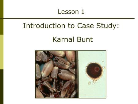 Lesson 1 Introduction to Case Study: Karnal Bunt.