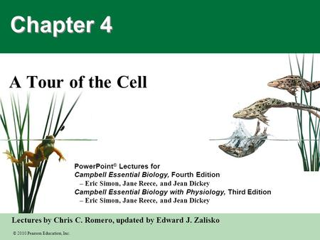 Chapter 4 A Tour of the Cell.